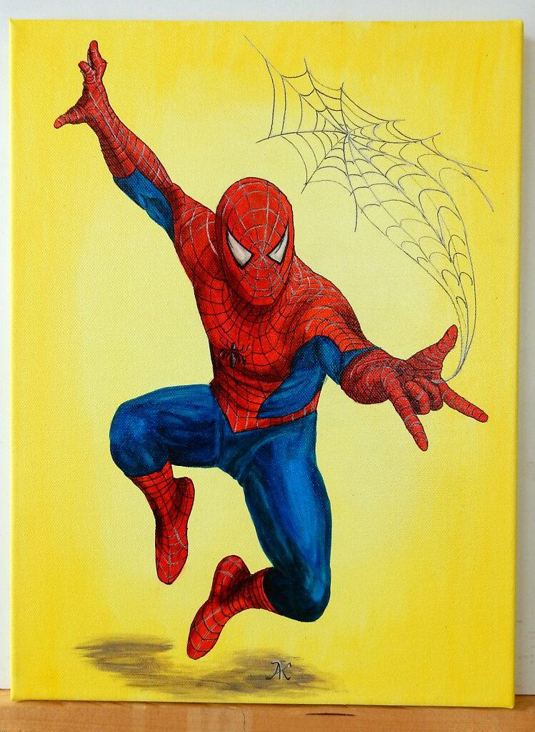 22-Spiderman-fuer-Robin.JPG