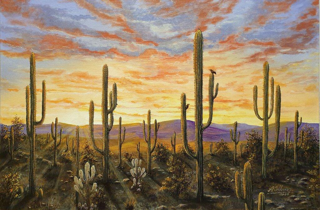 Kaktuswüste