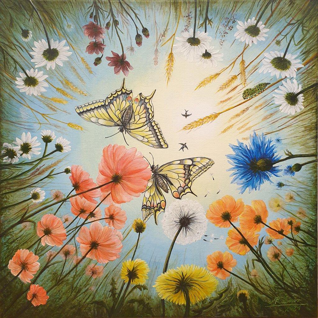Flower meadow_caterpillar view